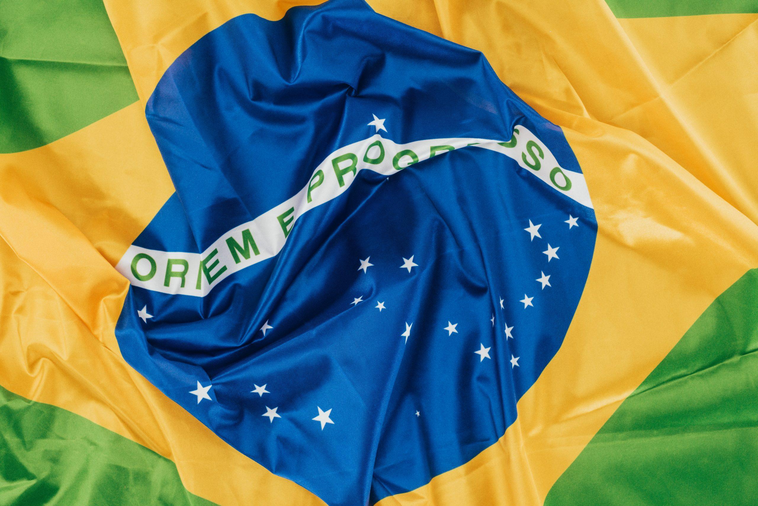 Restrições à liberdade de desenvolvimento do Brasil no âmbito da OMC e da OCDE
